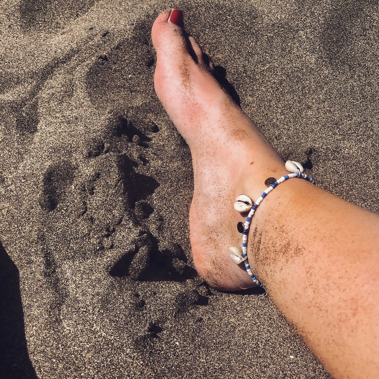 Anklet coins and shells